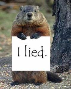 Ground hog lied